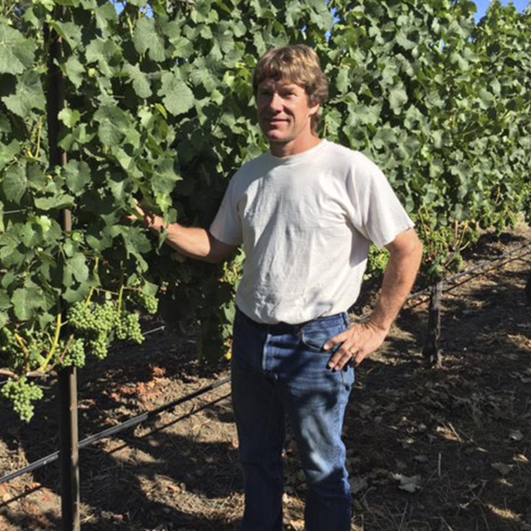 Ferrington Vineyards